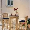 Banteng bárasztal