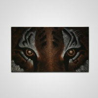 Festmény tigris szemek nagy -
