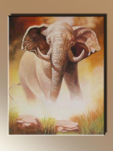 06. - Elefánt a vízparton